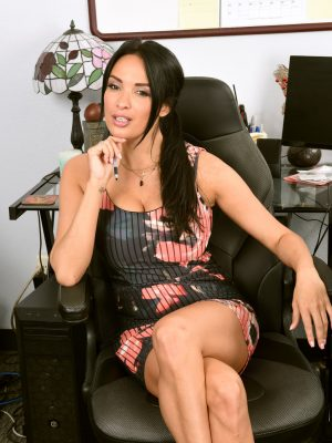 Anissa Kate Breathtaking Secretary