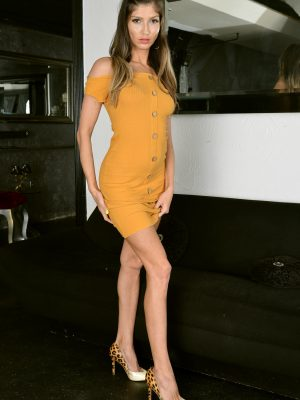 Karina Kaif Sultry Dress